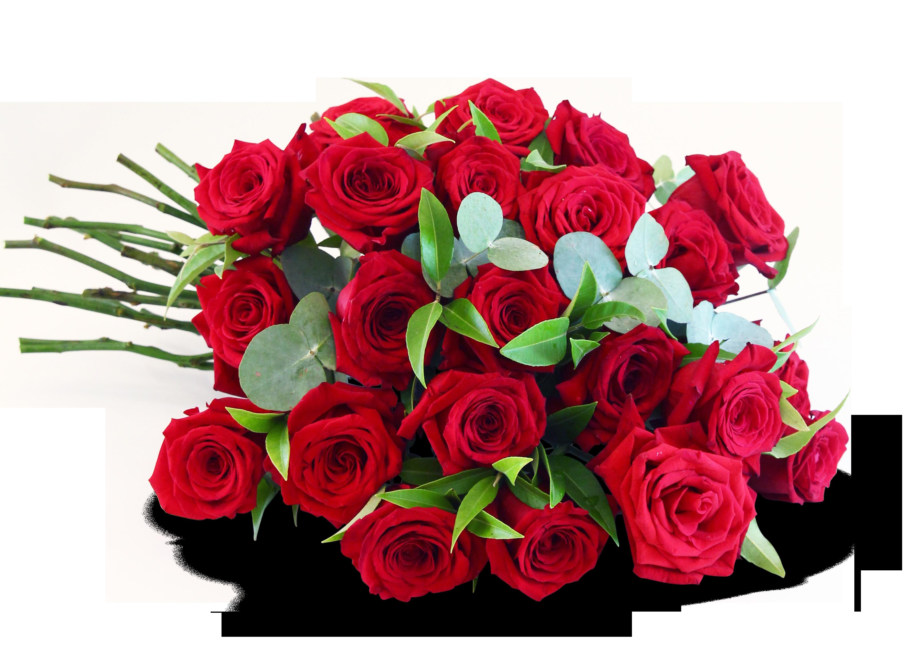 Long stem rose bouquet blooms of bowral
