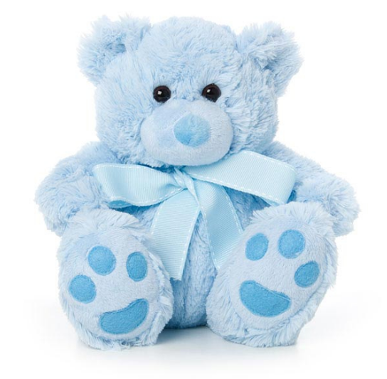 Add blue teddy bear to flower delivery from local Bowral Florist