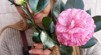 sammy-loves-camellia